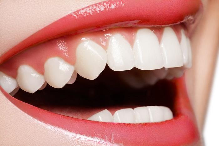 curiosidades sobre los dientes, dientes en majadahonda, dentista majadahonda, clínica dental majadahonda, odontólogo majadahonda, odontología majadahonda
